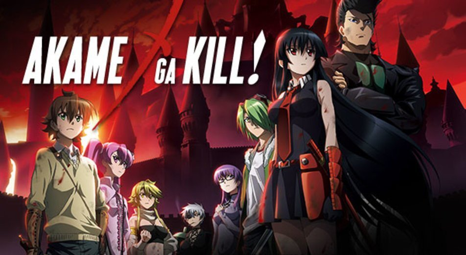 sad anime - akame ga kill