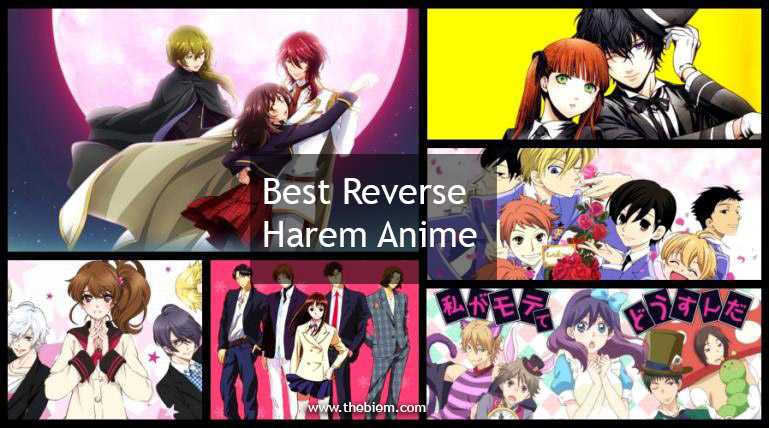 Best Reverse Harem Anime
