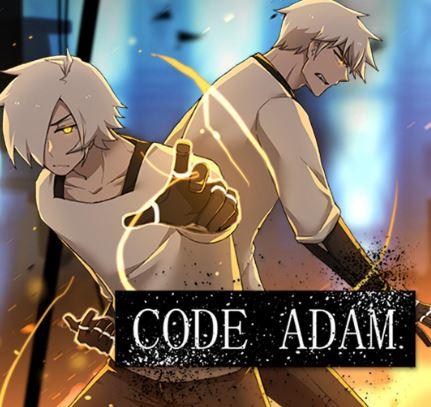 Code Adam