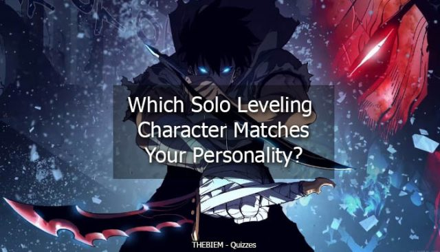 Which Solo Leveling Character Matches Your Personality
